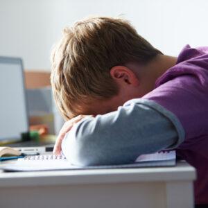 KiVA: Un programa contra el acoso escolar del que todos somos responsables